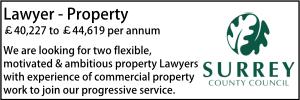 Surrey March 21 Property