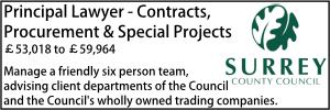 Surrey June 20 Principal Contracts
